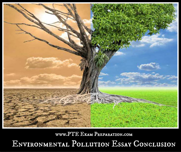 Essay on Environmental Pollution: 7 Selected Essays on Environmental Pollution