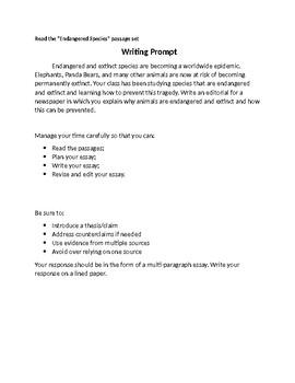 How to write informative essay 4th grade