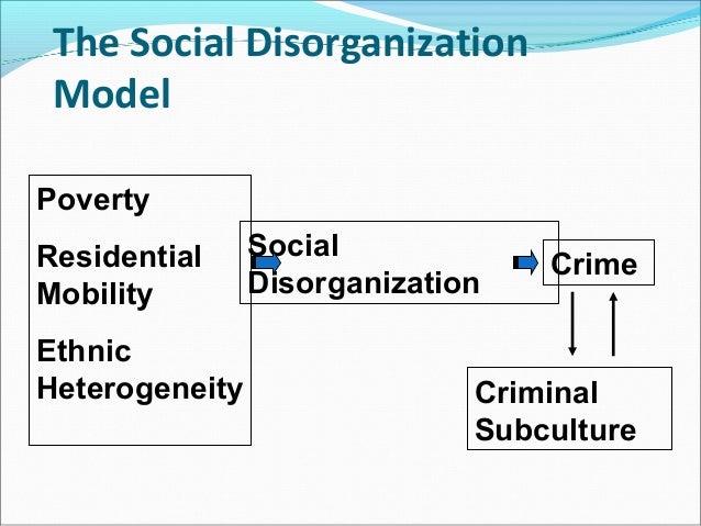 Social disorganization theory essay